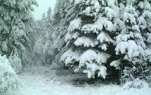 Cobertores e o frio do inverno
