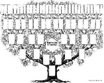 Fazer árvore genealógica-Encontrar parentes de gerações passadas