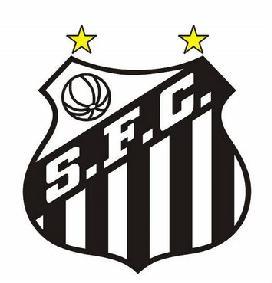 Poster do Santos Campeão da Libertadores 2011-Paulista e Copa do Brasil 2010
